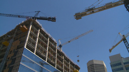HD2008-7-9-28 cranes Stock Video Footage