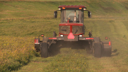 HD2008-7-14-48 tractor harvesting timothy hay Stock Video Footage