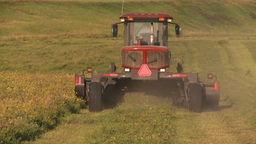 HD2008-7-14-48 tractor harvesting timothy hay Footage