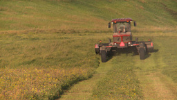 HD2008-7-14-50 tractor harvesting timothy hay Footage