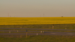 HD2008-7-14-58 canola fields highway Stock Video Footage