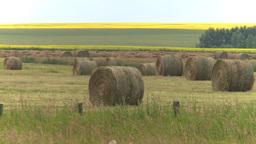HD2008-7-15-1 hayrolls Stock Video Footage