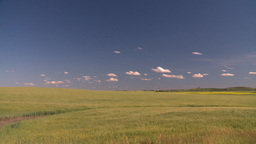 HD2008-7-16-59 wheat fields Stock Video Footage