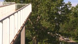 HD2008-7-17-31 walkway overpass Footage