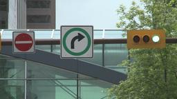 HD2008-6-1-38 traffic lights Stock Video Footage