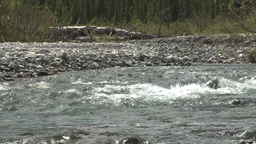 HD2008-6-3-45 elbow river rapids Stock Video Footage