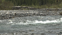 HD2008-6-3-45 elbow river rapids Footage