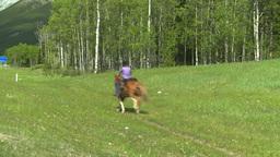 HD2008-6-5-60 horseman Footage