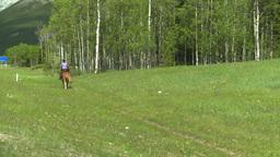 HD2008-6-5-60 horseman Stock Video Footage