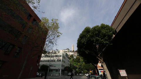 coit tower from street level Stock Video Footage