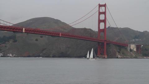 boat sailing under golden gate Live影片
