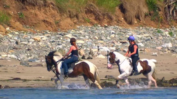 Horse Riding Stock Video Footage