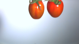 Vine tomatoes dropping in water Stock Video Footage