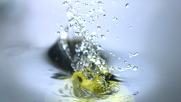 Apple falling in water close up Stock Video Footage