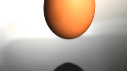 Egg falling in water Stock Video Footage
