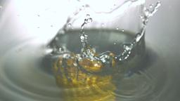 Corn cob falling in water Stock Video Footage
