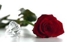 Diamond spinning beside red rose Footage