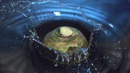 Turnip falling into water Footage