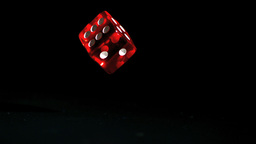 Red dice falling and bouncing on black background Live Action