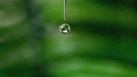 Drop of water falling against green natural backgr Stock Video Footage