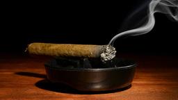 Cigarette in ashtray Footage