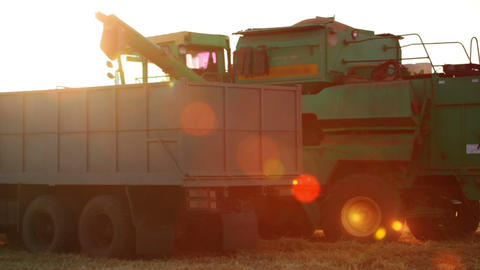 Harvester is Unloading Grain to the Truck and Lens Stock Video Footage