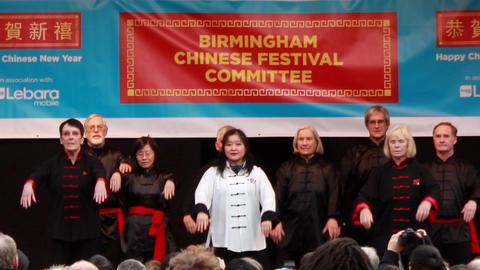 Yang Tai Chi Quan Martial Arts Demonstration Stock Video Footage