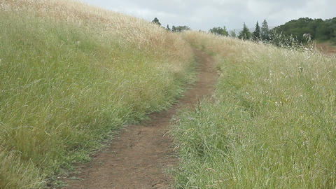 hiking path on a grassy hill Footage