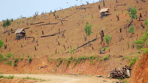 Deforestation in Laos, Cutting Rainforest, Naked E Footage