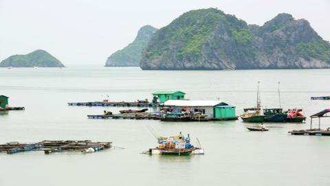 floating village at limestone islands, Halong Bay, Footage