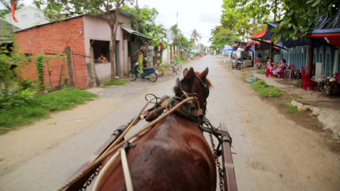 MEKONG DELTA, VIETNAM - MAY 2014: local horse ride Footage