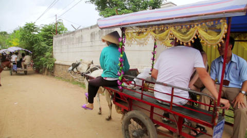 MEKONG DELTA, VIETNAM - MAY 2014: local horse ride Footage
