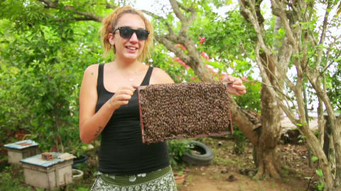 Holding honey beehive bare hand Stock Video Footage