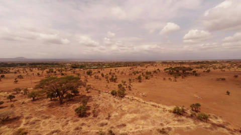 Aerial. Masai Mara National Reserve, Kenya Footage