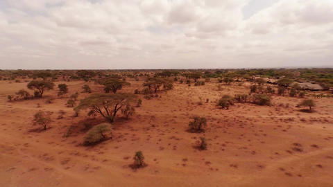 Aerial shot of Savanna from a height of 10 meters Footage