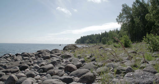 The Rocky Shore Of The Sea Near The Forest With Lo stock footage