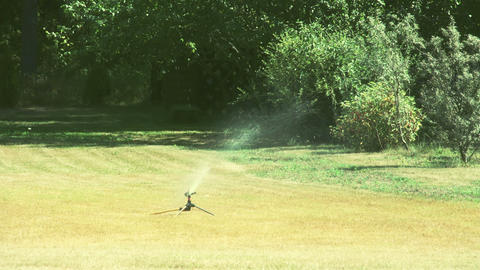 A grass sprinkler putting some water on the bermud Footage