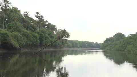 031 Pantanal , boating on the river , slowmotion Footage
