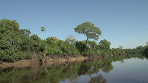 044 Pantanal , boating on the river , slowmotion Footage