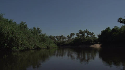 069 Pantanal , boating on the river , bleu sky Footage