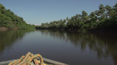 070 Pantanal , boating on the river , front of boa Stock Video Footage