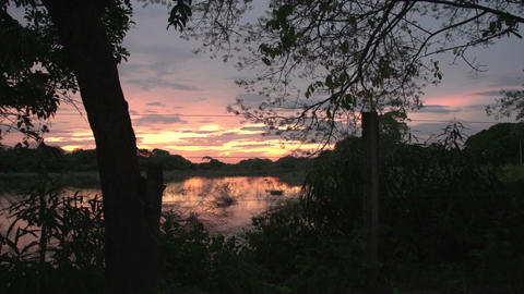 0136 Pantanal , sunset in the Pantanal wetlands Footage