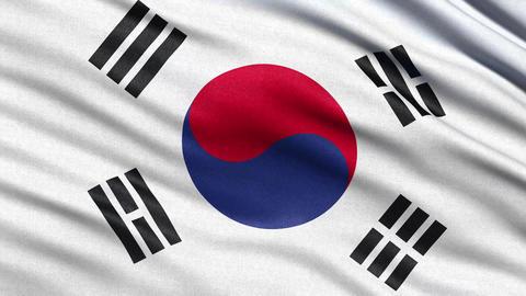 4K Flag of South Korea seamless loop Ultra-HD Animation