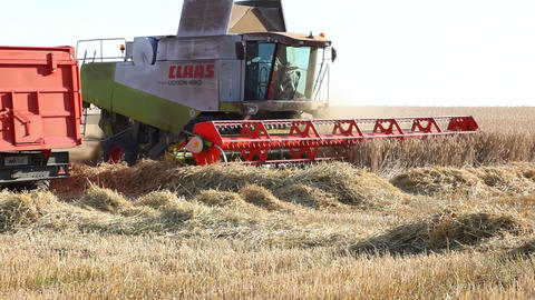 Harvesting with a combine harvester Stock Video Footage