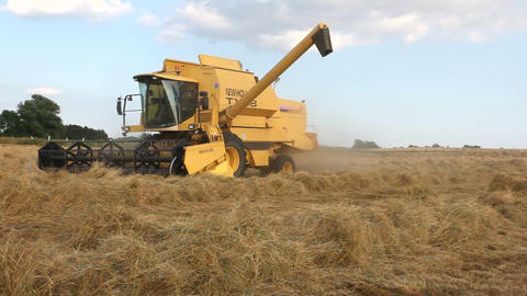 Yellow combine harvester harvesting the field Footage