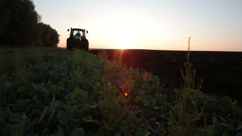 Tractor Plowing The Black Earth Plow Field At Suns stock footage
