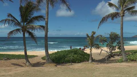 idyllic beach at oahu island,hawaii Footage