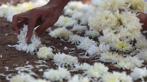 Brahmin lays flowers at the Indian ceremony Footage