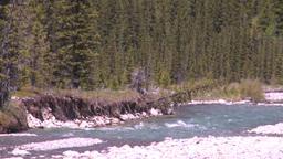 HD2008-6-9-36 mountain stream Stock Video Footage