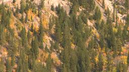 HD2008-10-1-14 lake bo#432F Stock Video Footage